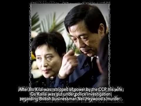 【禁聞】遠離中國!  薄瓜瓜 王露露尋保護