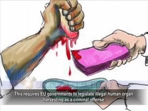 【中國禁聞】歐洲新公約 籲立法禁人體器官販賣