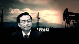 福建省长苏树林落马  反腐突破石油帮大庆系